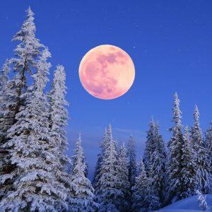 Почему луна сегодня такая большая?