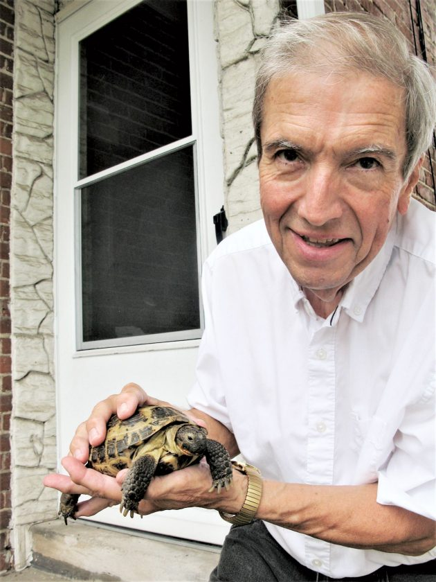 Мужчина Паркерсбург ищет самку-черепаху    Новости, спорт, вакансии